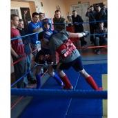 """Atviras ringas """"Muay thai prieš narkotikus ir smurtą"""""""